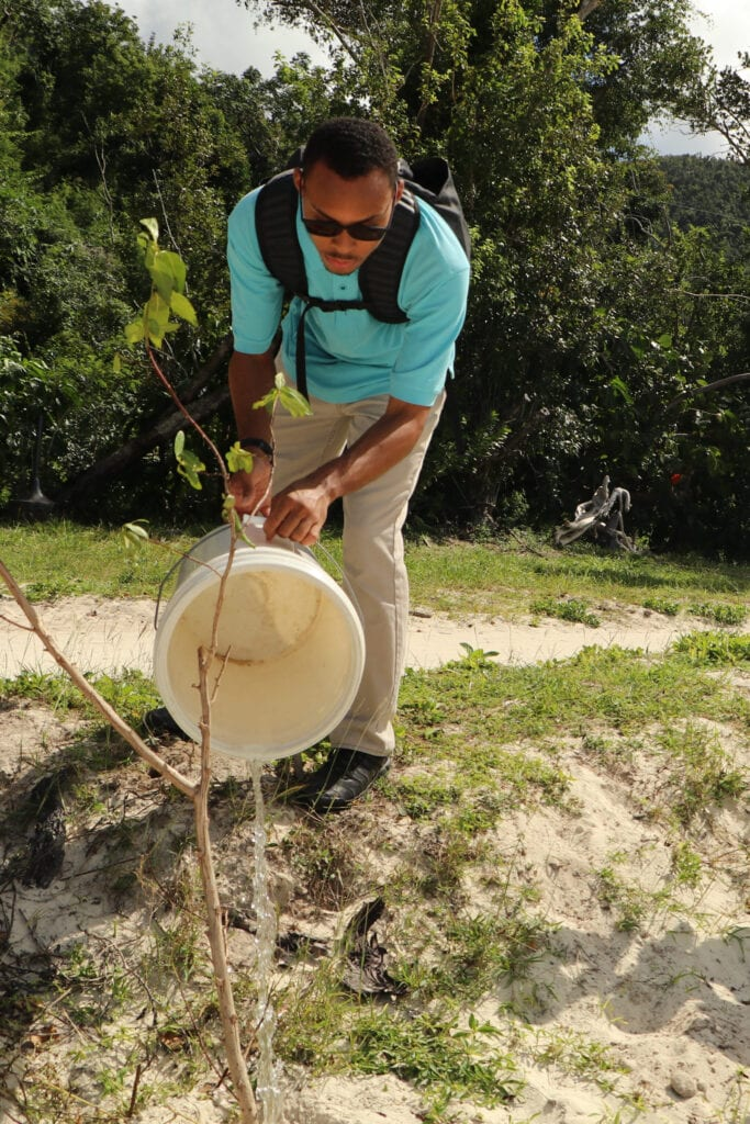A man watering a plant