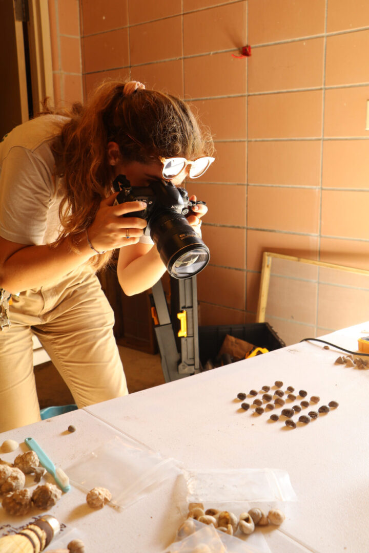 A photographer taking pictures of shells