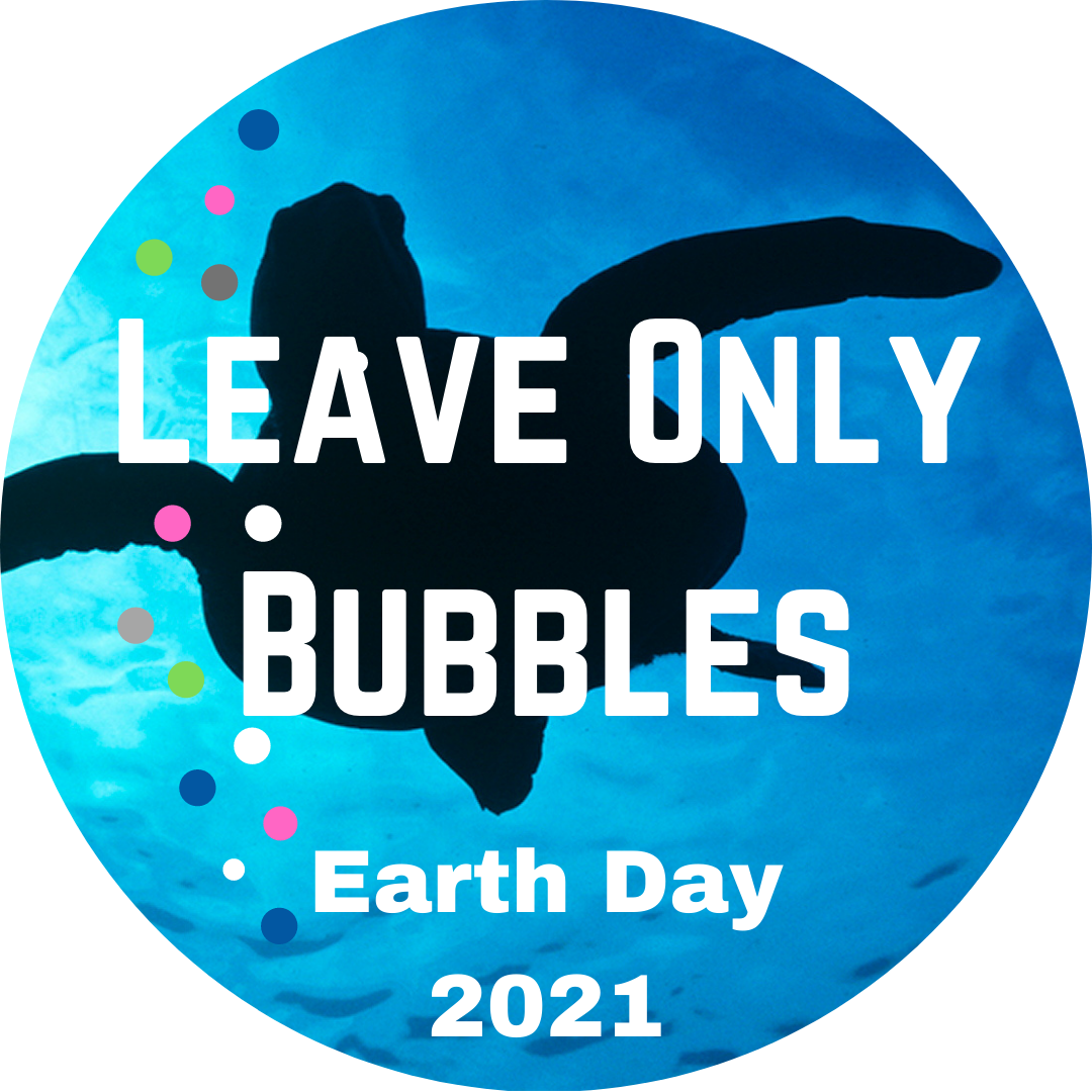 earth day 2021