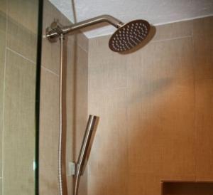 Papakea A209 shower
