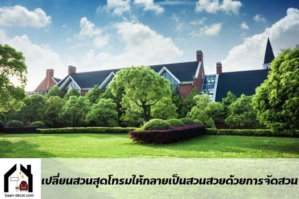 เปลี่ยนสวนสุดโทรมให้กลายเป็นสวนสวยด้วยการจัดสวน #บ้านและสวน