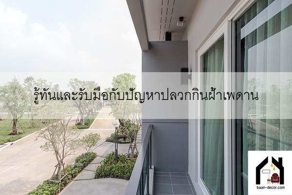 รู้ทันและรับมือกับปัญหาปลวกกินฝ้าเพดาน #ของแต่งบ้านราคาถูก