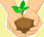 hands holding plant 147x125