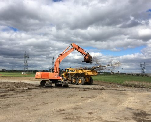 machinery conducting stripping works