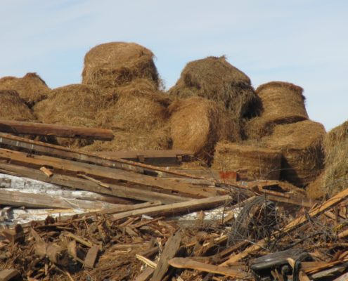 Photo of hay bales at the Kellam Barn demolition site near Major Mackenzie Drive