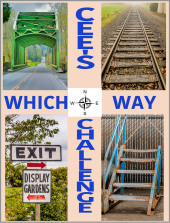which way challenge