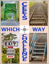 which way challenge
