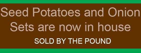 576X216_slider_seedpotatoes_onions_2016_web