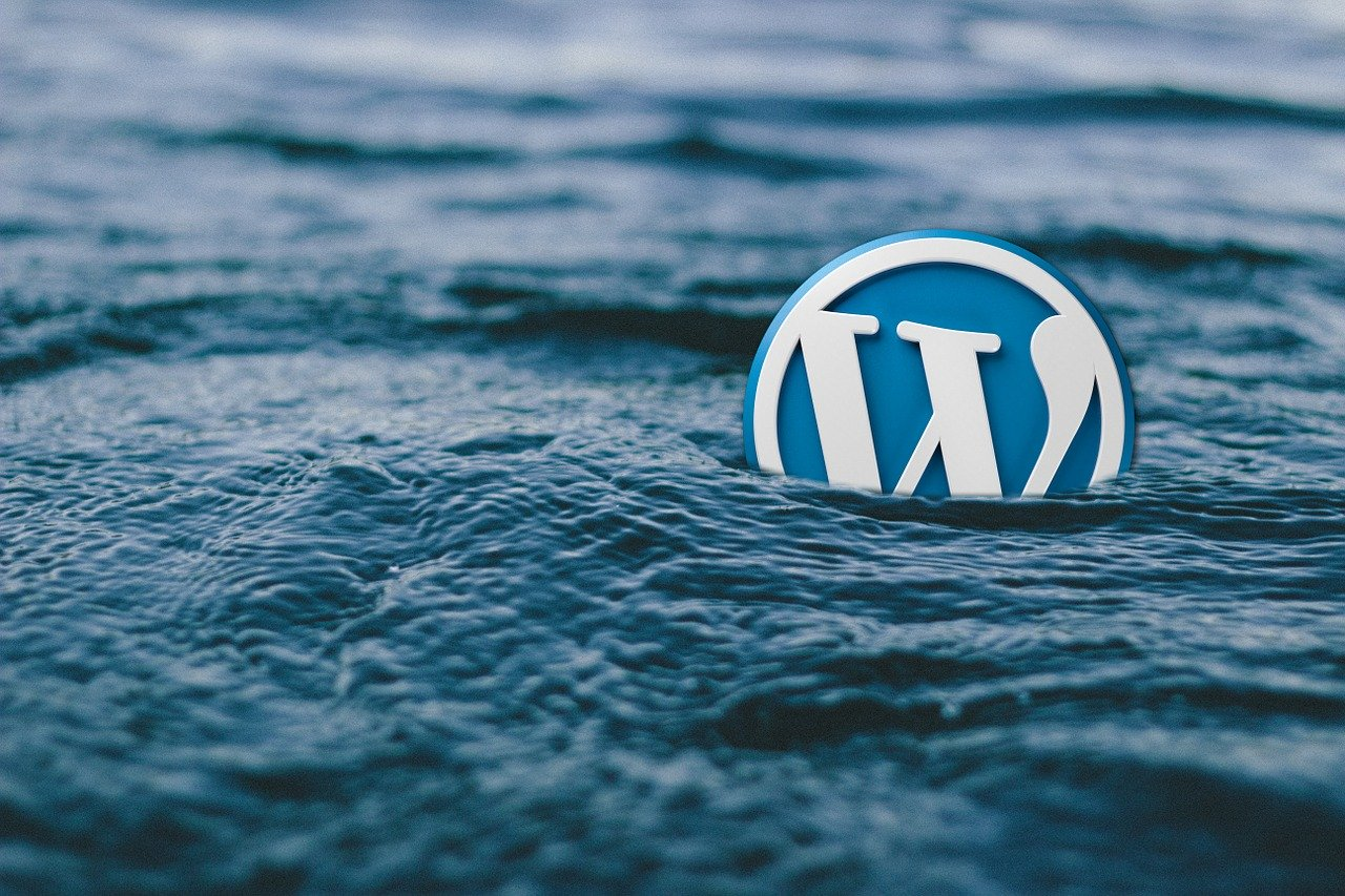 A Comprehensive Review of GoDaddy Deluxe Plan Web Hosting of WordPress  – Story of TechSap.in
