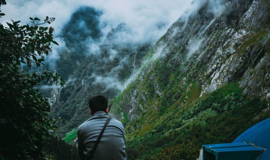 All about Valley Of Flowers Trek