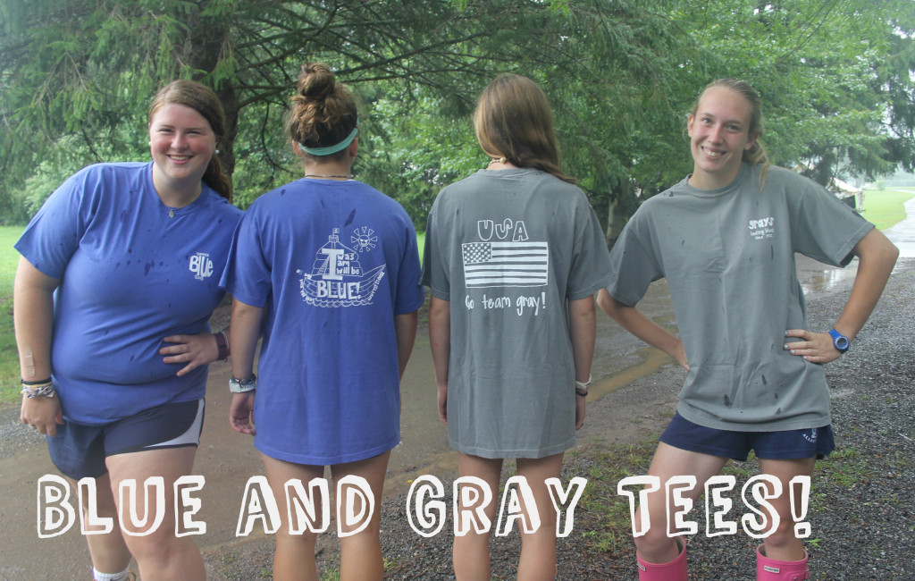 Camp Alleghany Blue and Gray Tee