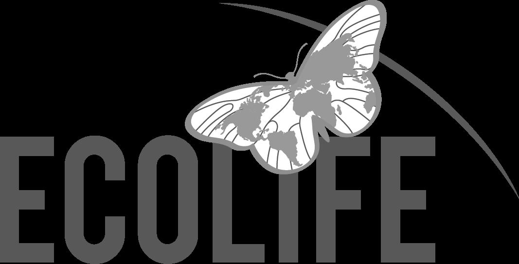 Logo Experiment_No Slogan_Transparent