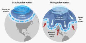 Stable and wavy polar vortex