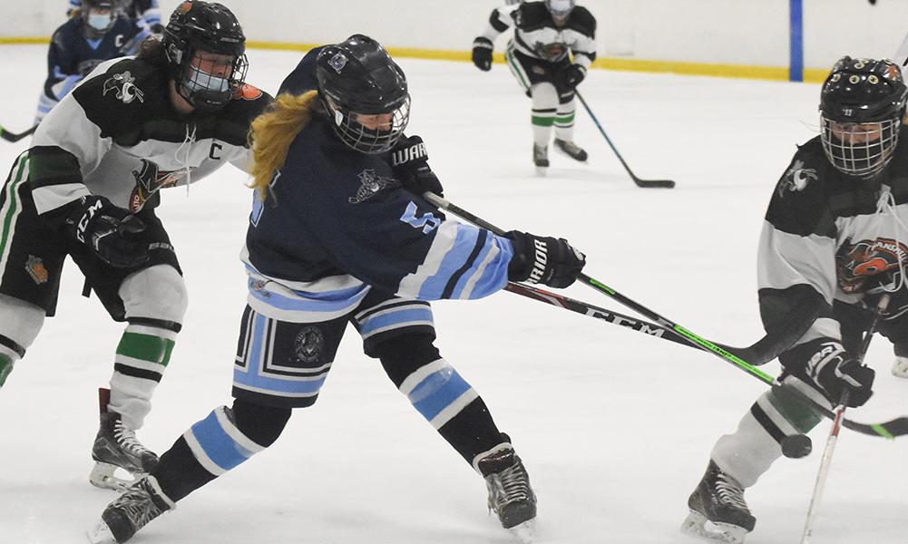 Franklin girls hockey