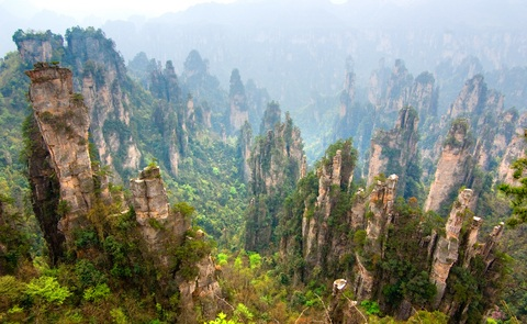stone-forest-china-zhangjiajie