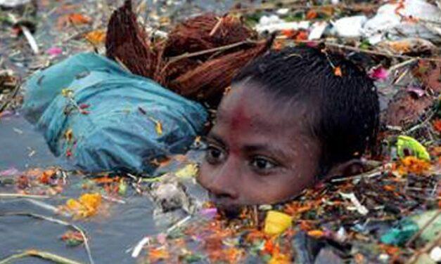 Crise Ambiental e Democracia – Elimar Nascimento
