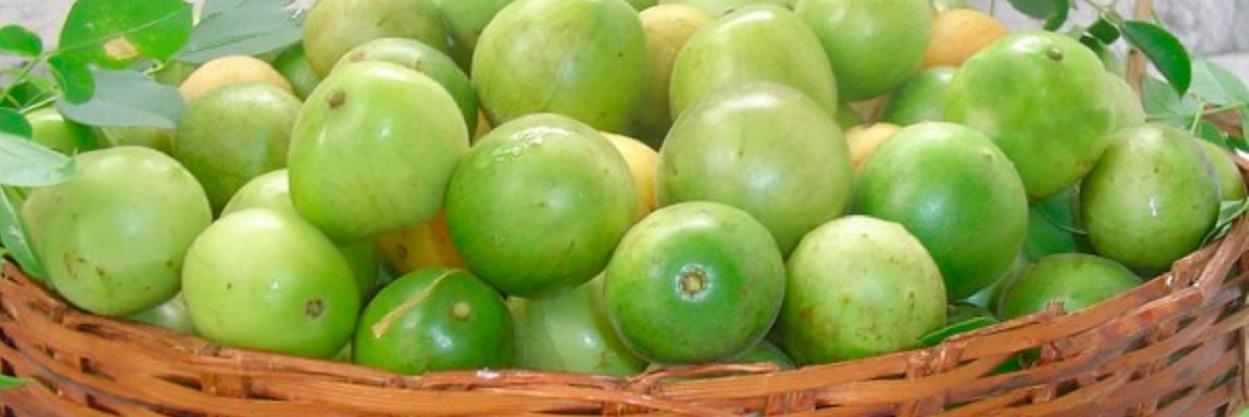 Cesto com Umbu, fruta típica do Nordeste.