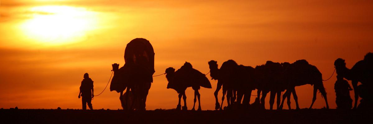 Cena do filme Journey to Mecca - the story of Ibn Battuta (played by Chems Eddine Zinoun) Director- Bruce Neibaur.