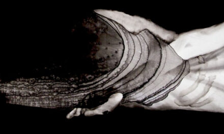 Nua e crua: a história de Ferenc Kuhn – Fernando Dourado