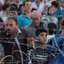 Crise dos refugiados (8): sírios entre os bombardeios e o arame farpado – Helga Hoffmann