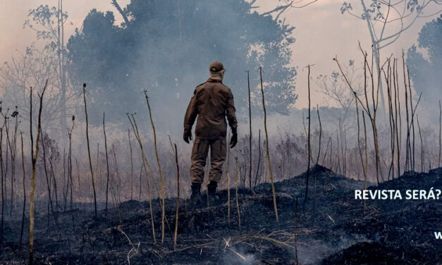 Fumaça na Floresta: yo no creo en brujas, pero que las hay, las hay – Helga Hoffmann