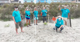 First sea turtle nest found in North Myrtle Beach