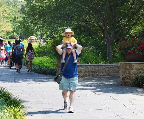 fathers day arboretum