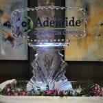 Adelaide Brookline '19