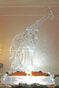 Giraffe with Shrimp display