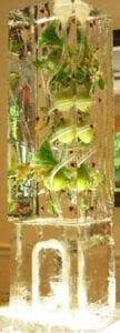 Apple Blossom Cranberry Ice Luge Sculpture