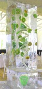Kiwi Ice Luge Sculpture