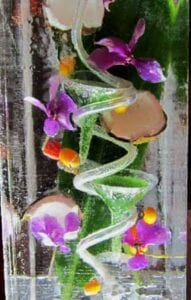 Tropical-Passion Ice Luge Sculpture