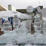rock hopper penguins Ice Sculpture Boston