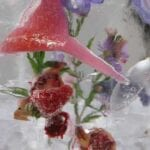 purple flowers and strawberry ice luge