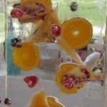 table-top-martini-bar-pics-'11-good-2