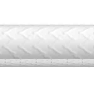 BeGraft Aortic Stents