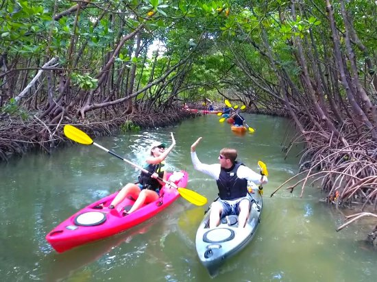Best Places To kayak In Marco Island With Marco Island kayak Rentals