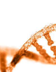 Normocellular bone marrow with progressive trilineage hematopoiesis