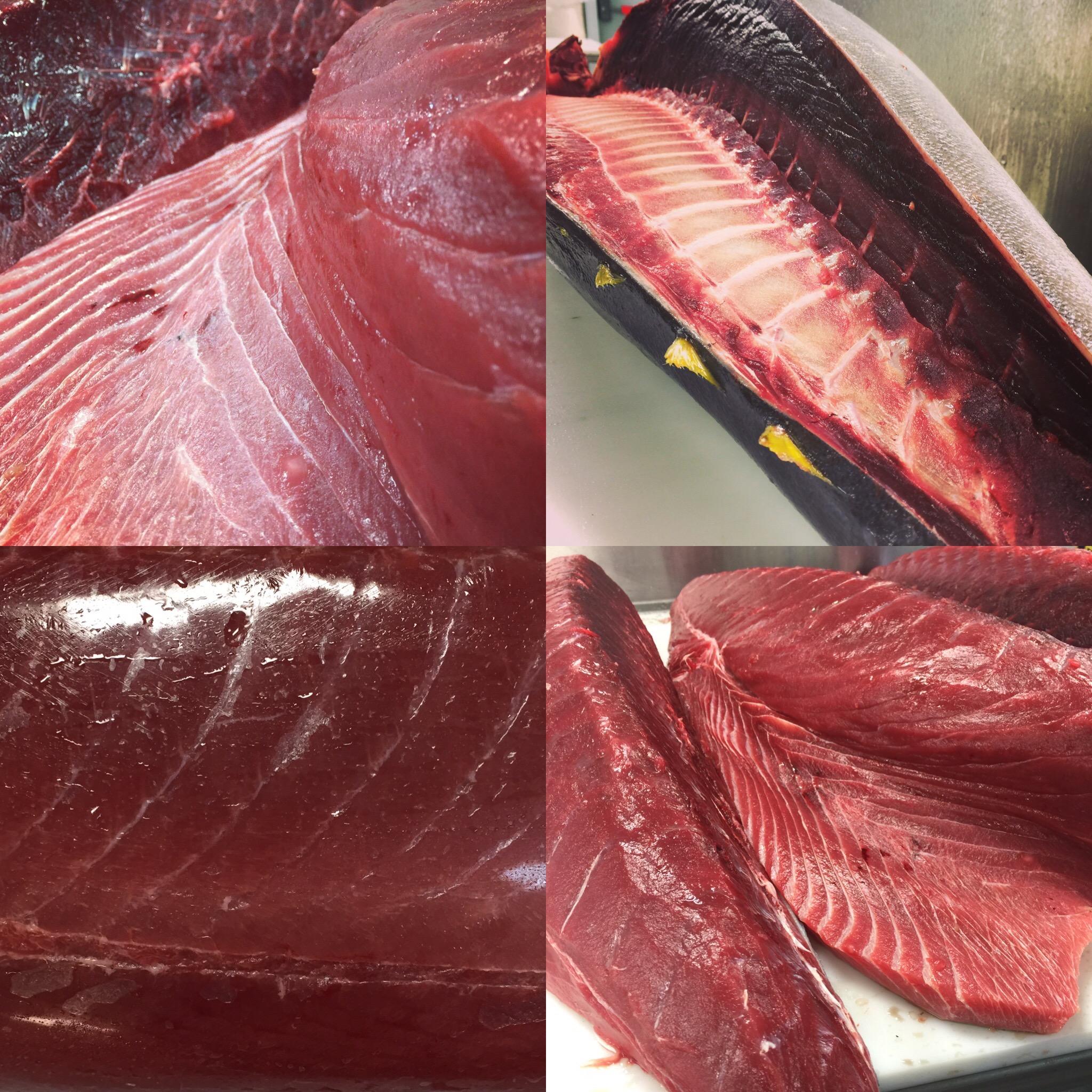 Collage Tuna Big Eye