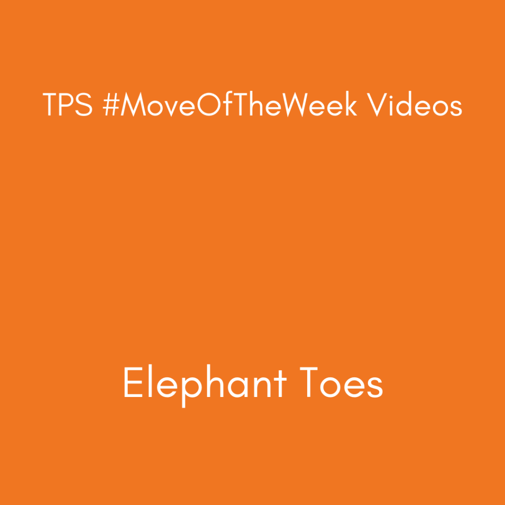 Elephant Toes