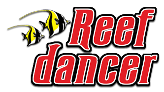 Reef Dancer Maui