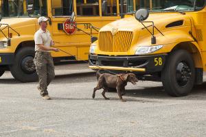 K2-12-085 Canine Demo-Elks-037