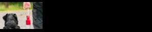 Procurement Partners Banner