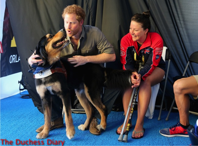 prince harry pets dog competitors tent invictus games 2016