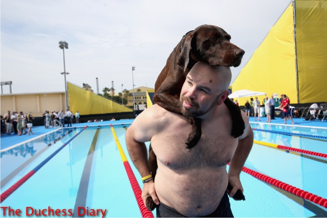 competitor and service dog swimming pool invictus games 2016