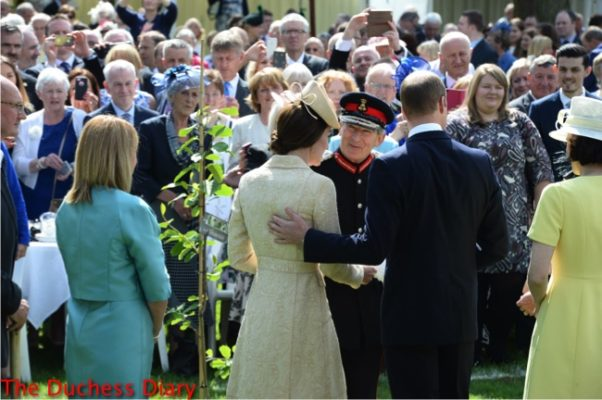 prince william puts hand duchess of cambridge back northern ireland garden party