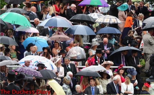 racegoers hide under umbrellas royal ascot day one rain