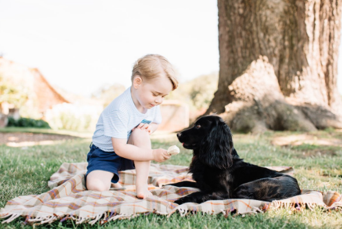 prince george feeds lupo ice cream picnic blanket anmer hall
