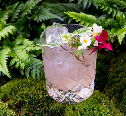 hepple gin summer cup the goring hotel