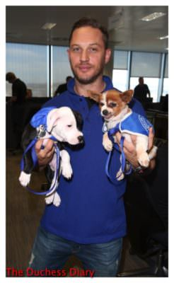 tom hardy holds two puppies bgc charity day london